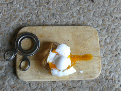 egg scissors and egg